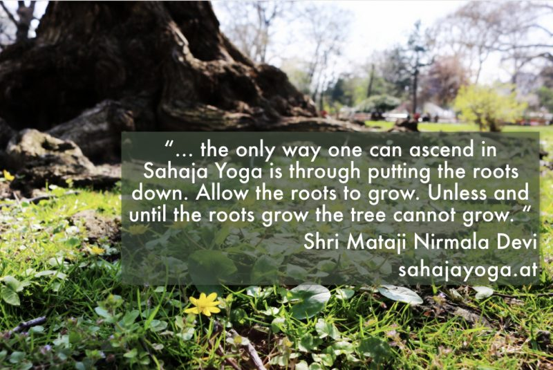 Shri Mataji Nirmala Devi Quote about roots, with image of tree trunk and roots